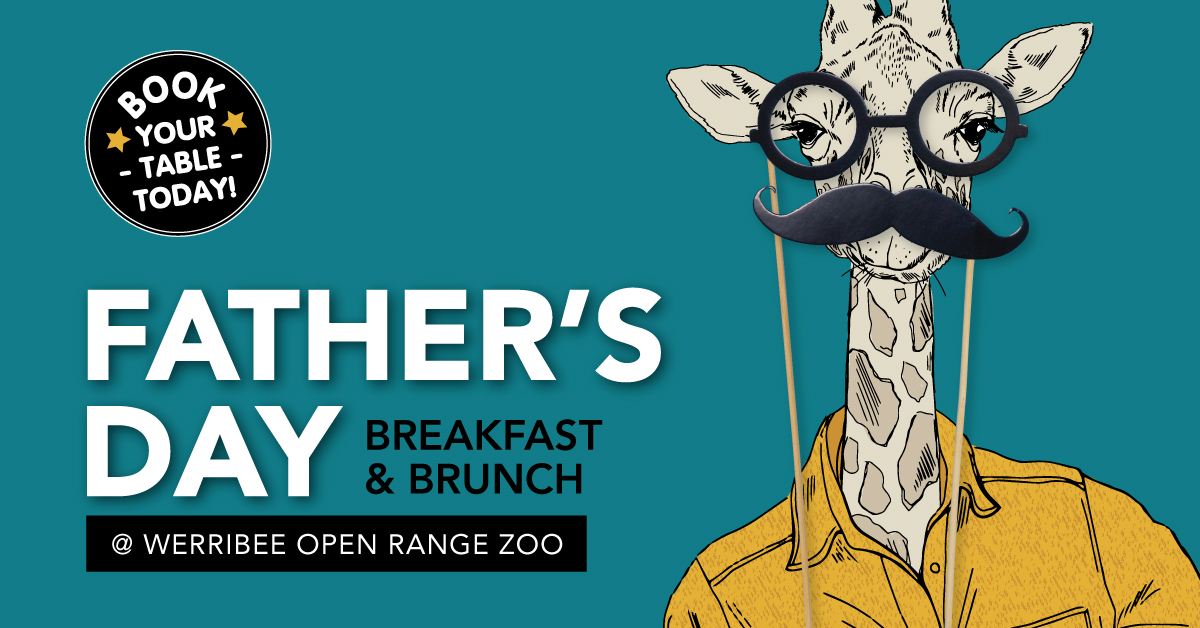 Father's Day at Werribee Open Range Zoo